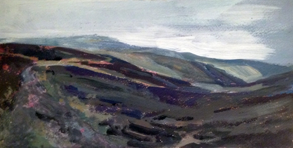 Black Combe Top 2013 acrylic on paper