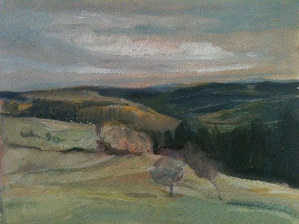 Above Betws y Coed (oil on paper 2013) 10