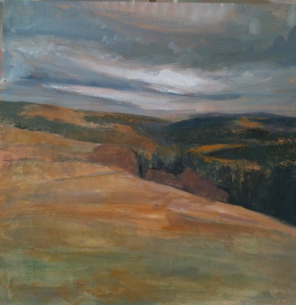 Above Betws y Coed (oil on canvas 2013)