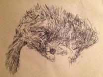 Tatty Cat (pen on A5 sepia paper, unframed 2014) £15