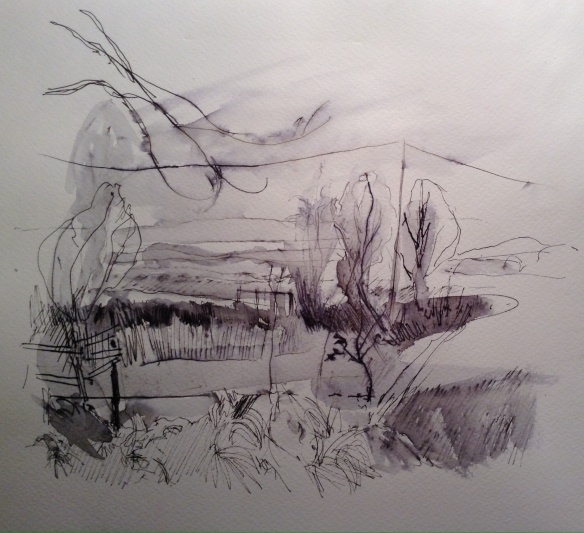 By Summertrees (22x22cm plus mount, water-soluble pen on paper) £40